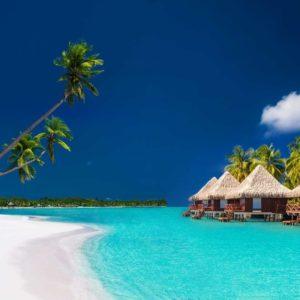 The Andaman Nicobar Island's Pristine Resplendence