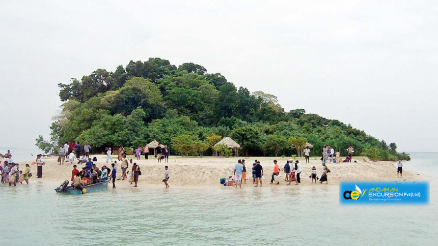 We are Rated because the Best Travel Planner For Andaman Islands!