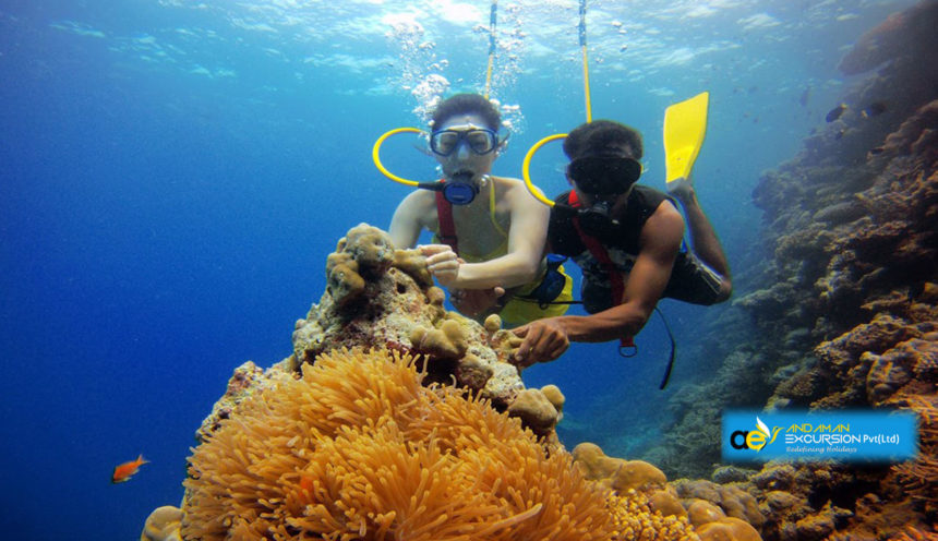 Bachelors & Friends Group Tour Packages to Andaman and Nicobar Island