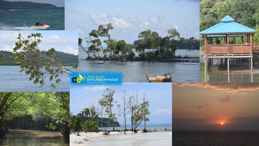 Brief about Andaman and Nicobar island tour packages
